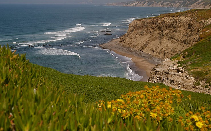 Jalama Beach aerial view